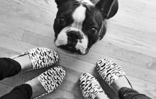 StacheShoes